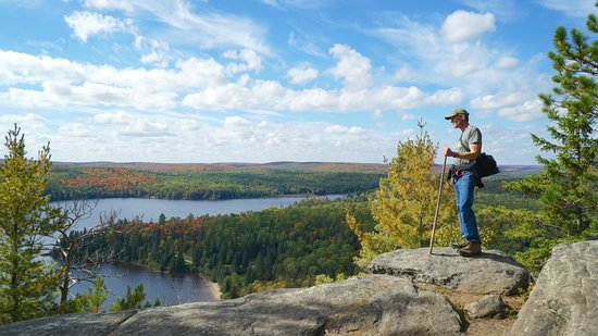 Beautiful Vista From Algonquin Centennial Ridges Trail Picture of