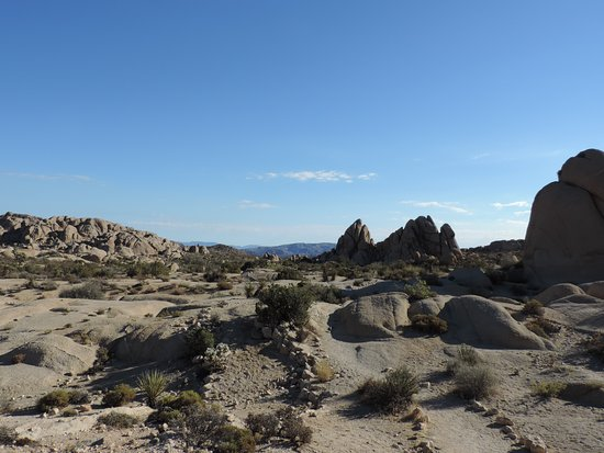 Spin and Margie's Desert Hideaway: Joshua Tree National Park