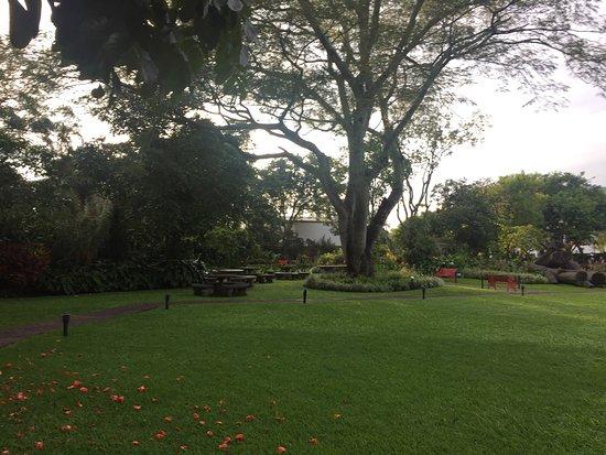 Santo Domingo de Heredia, Costa Rica: photo5.jpg