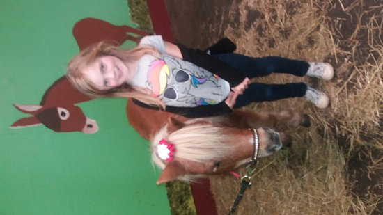 Meols, UK: Pams Pony Parties