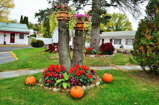 ‪ويليامز تاون موتل: Fall Decoration‬