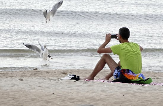 Palanga Beach. Strand in Palanga   Picture of Palanga Beach  Palanga   TripAdvisor