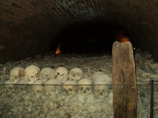 Брно, Чехия: 50000 σκελετοι