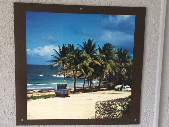 Holetown, Barbados: Picture in the room very nice