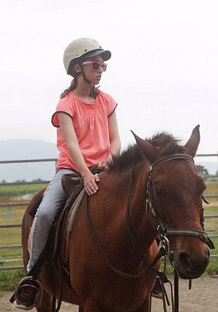 Yorkeys Knob, Australia: Horse riding