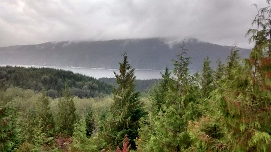 Soule Creek Lodge: View from the door of our yurt