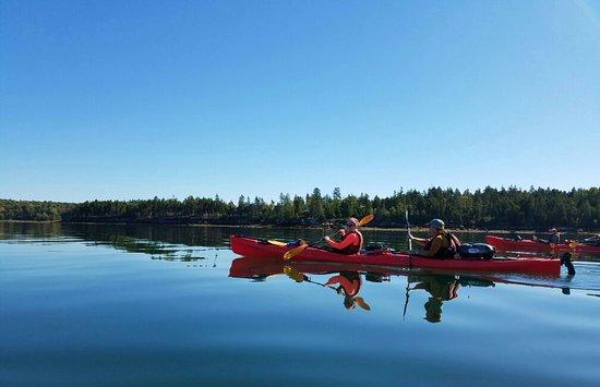 National Park Sea Kayak Tours : 20161005_135258_large.jpg
