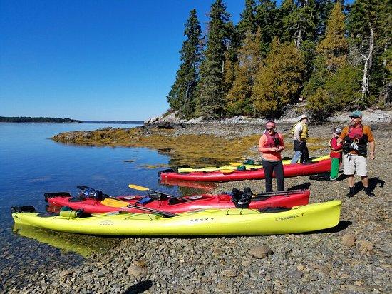 National Park Sea Kayak Tours : 20161005_105233_large.jpg