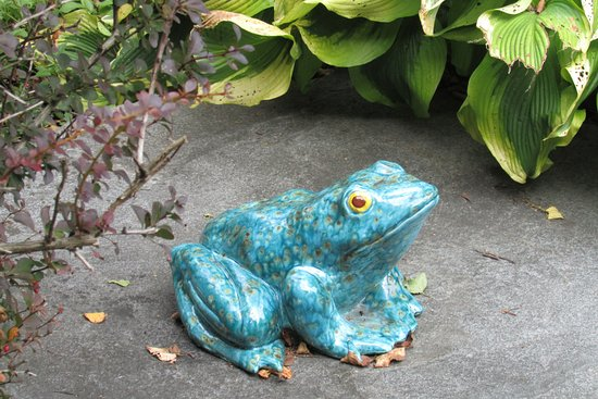 West Stockbridge, MA: garden frog