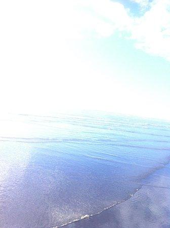 Moclips beach
