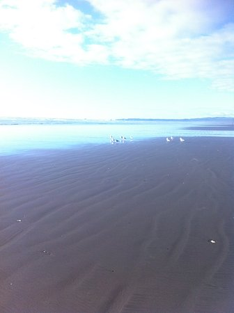Moclips, WA: A beach one could drive on