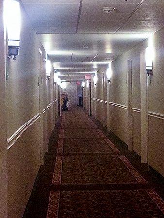 伯靈頓假日飯店照片
