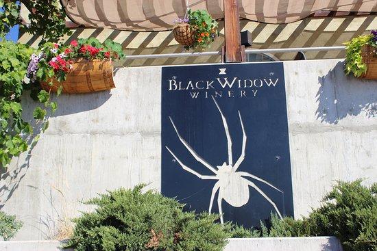 Black Widow Winery Foto