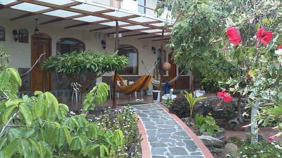 Foto de hostal casa de laura san cristobal lugar for Como decorar una jardinera exterior