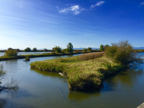 Delta, Canada: photo0.jpg