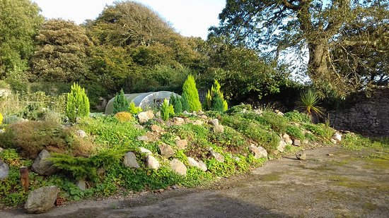 Roch, UK: Rockery in the walled garden