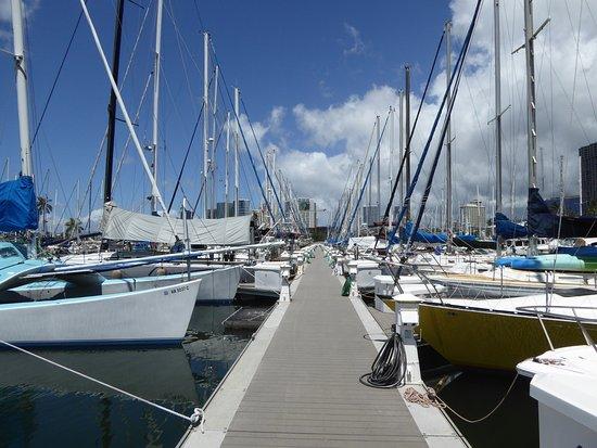 Ala Wai Yacht Harbor : 住んでいる人も多い