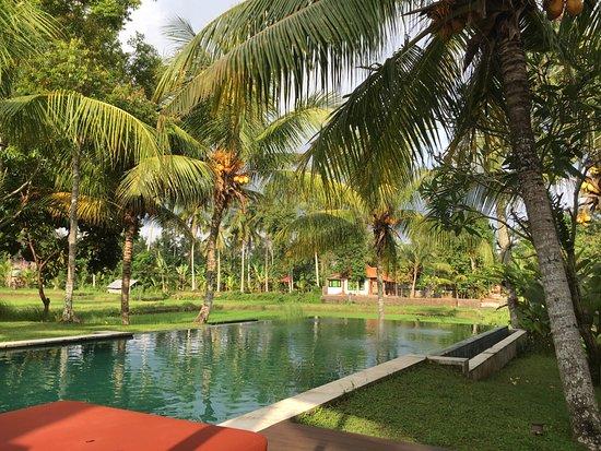 Villa Sabandari Görüntüsü