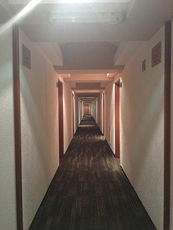 Hotel Palace: Me gustó este lugar por su ubicación, lo único malo es que no tenga aire acondicionado, de ahí e