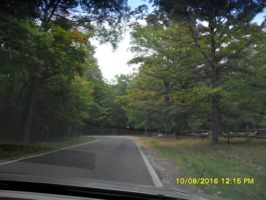 Emmet County, MI: Narrow lane with no centerline
