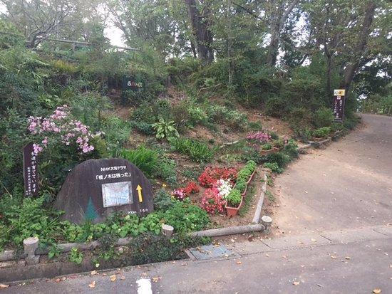 Shibata-machi, Japão: 樅の木は残ったの石碑 木は、ここから歩いて数分