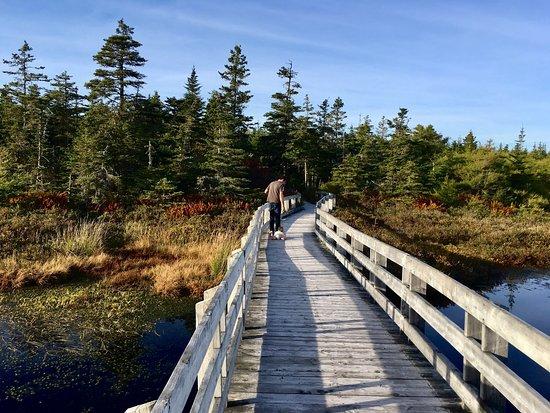 Black Duck Cove Provincial Park