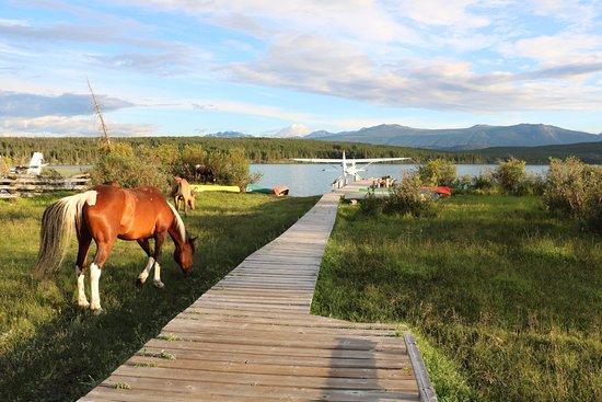Kleena Kleene, Kanada: Aussicht von der Ranch