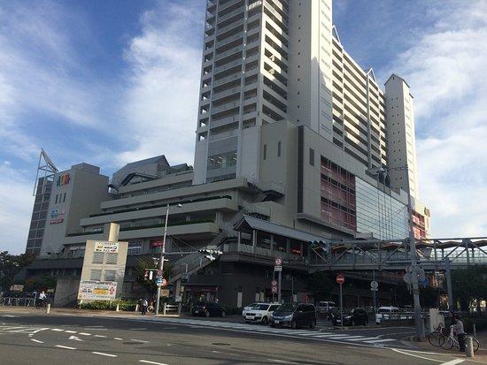 Acta Nishinomiya