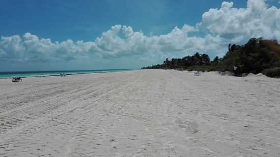 Melia Cayo Guillermo The New Beach