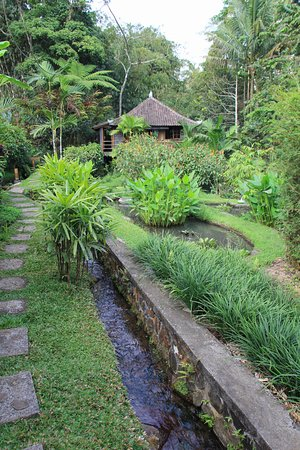 Bali Eco Stay Bungalows: Path to the bungalow
