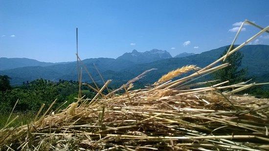 Castiglione di Garfagnana, Italie : Alpi Apuane