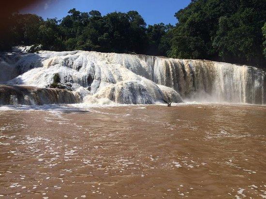 Picina Natural Agua Azul Picture Of Cascadas De Agua Azul