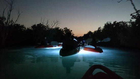 Noukhada Adventure Company: Night