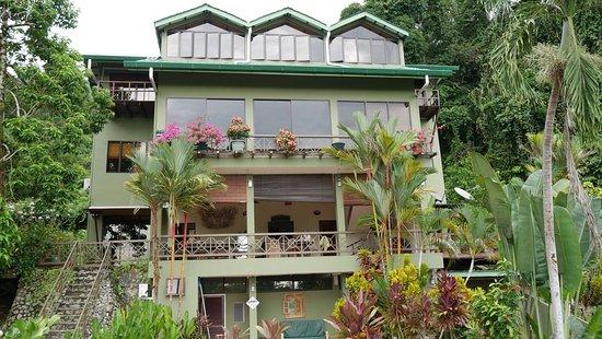 Nanga Damai Homestay: Great stay at Nanga
