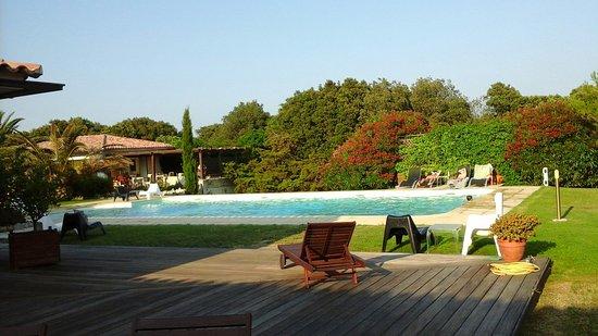 Poisson Rouge : Pace relax stupendo meraviglioso giardino