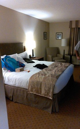 Radisson at The University of Toledo : the bed was the most comfortable I have ever slept in at a hotel