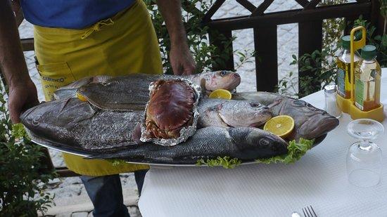 Restaurante O Lourenco 사진