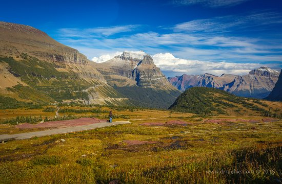 West Glacier, MT: The view back towards Logan Pass and you descend the boardwalk