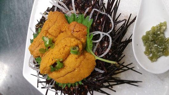 Wethersfield, CT: Live Sea Urchin