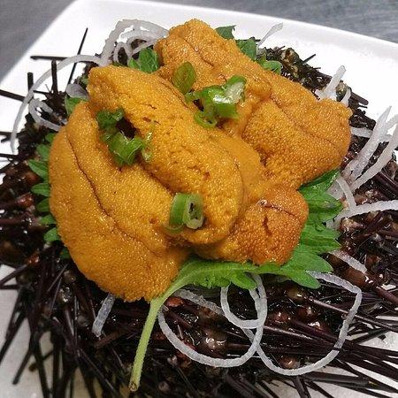 Wethersfield, كونيكتيكت: Live Sea Urchin from California