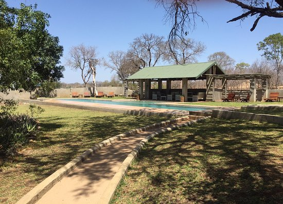 Notten's Bush Camp: The view of the pool