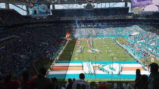Miami Gardens, FL: IMG_20161009_125446_large.jpg