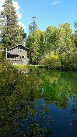 Sierra City, CA: 1475952669117_large.jpg