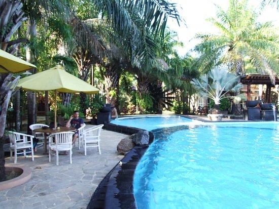 Palm Beach Resort : piscine et petit déjeuner