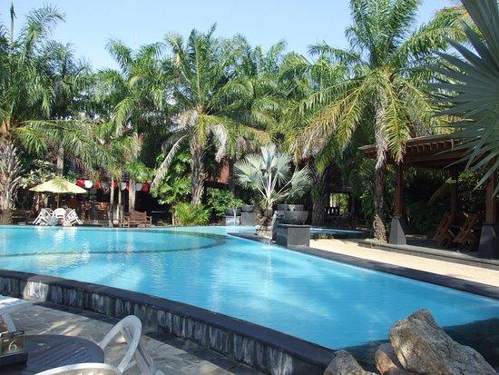 Palm Beach Resort : piscine