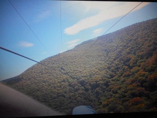New York Zipline Adventure Tours : A Picture from a paused go-pro video.