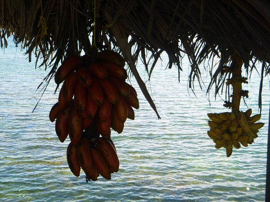 Isla San Cristobal 사진