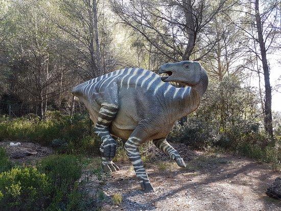 Musee - Parc des Dinosaures: Iguanodon