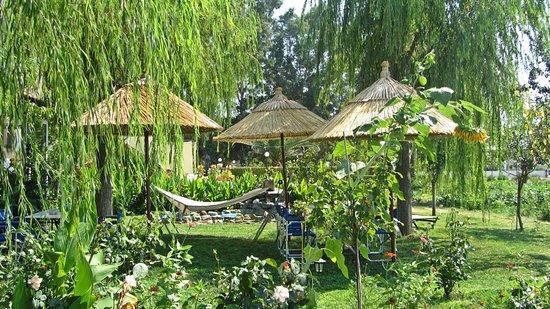 Skala Kallonis, Yunani: garden shine studios