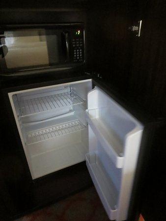 มาร์แชลล์, มิชิแกน: Fridge is small, with no freezer